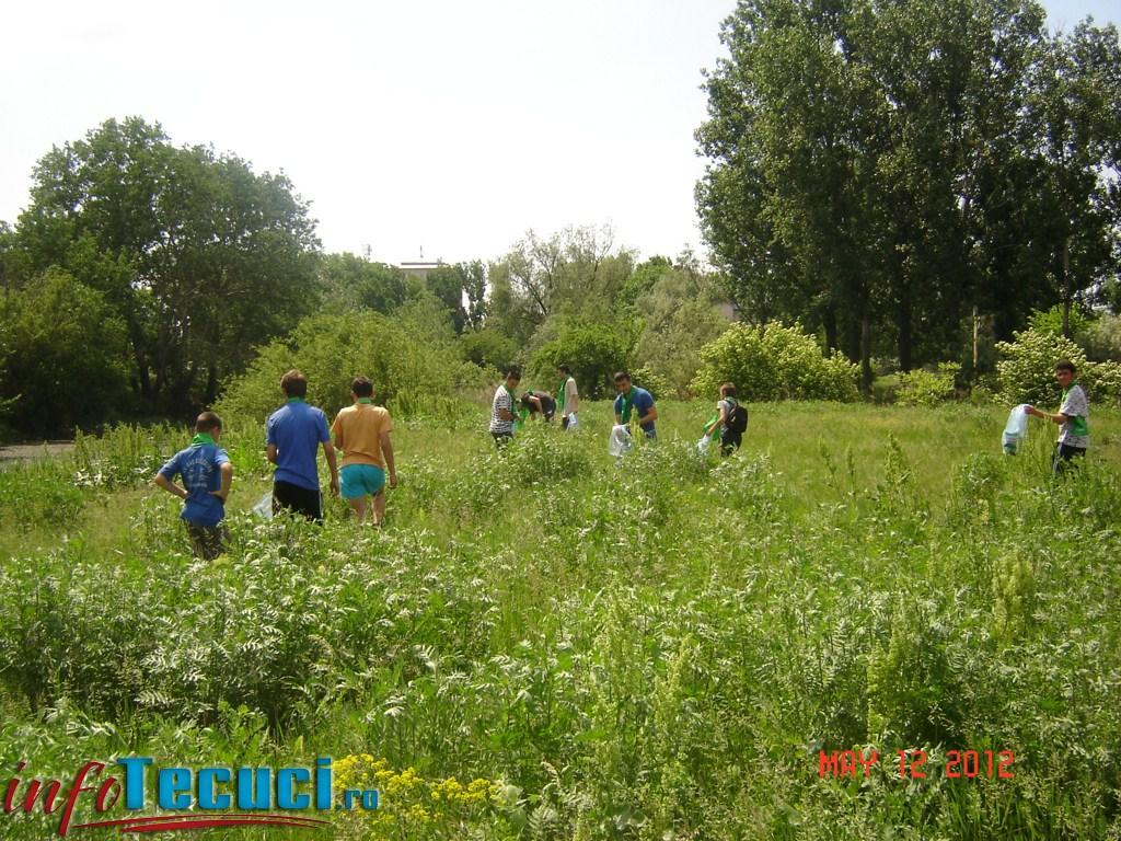 Tinerii verzi tecuceni fac acțiuni de ecologizare a orașului