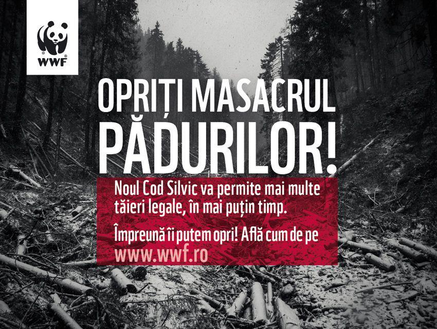 WWF România: Modificarea Codului Silvic, instrument legal pentru epuizarea pădurilor României