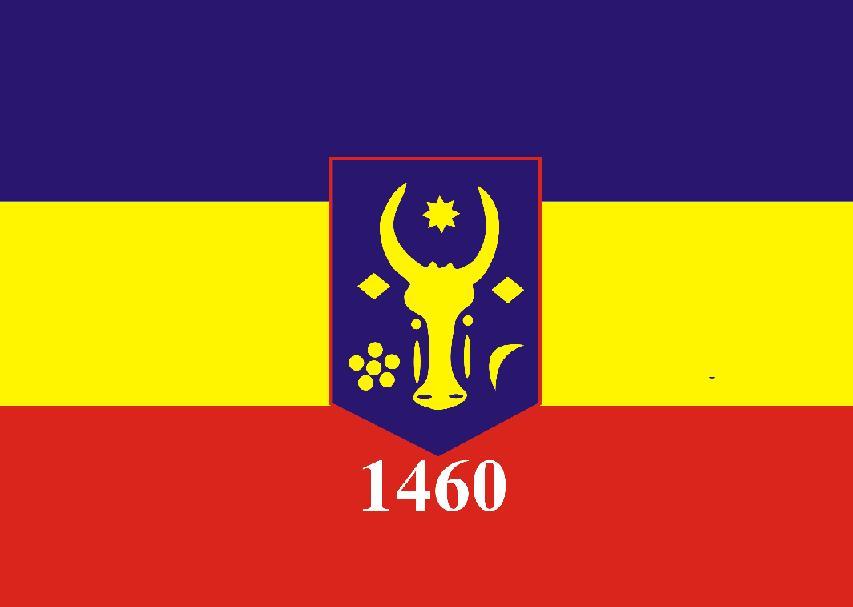Preşedintele Consiliului Judeţean Covasna, Tamas Sandor … a descoperit că Bălăbăneştiul are steag!